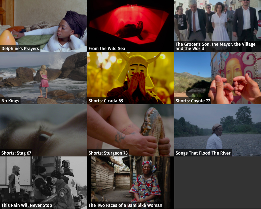 A grid of images from the Teleported Fest film lineup